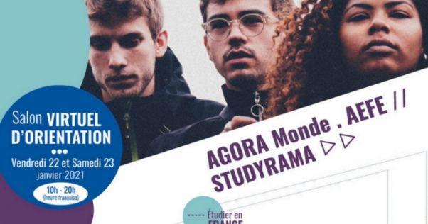 Exalumnos Liceos Franceses en el Mundo:  Salon Virtuel d'Orientation 'Étudier en France'