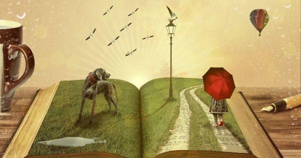 Convirtiendo sueños en libros