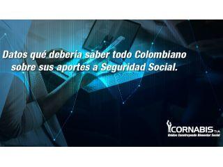 Datos qué debería saber todo colombiano sobre sus aportes de seguridad social