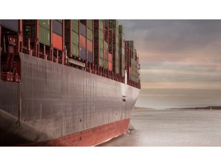 Worldwide Cargo Business Opportunities during the Pandemic