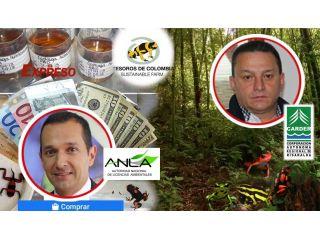 ¿Señores de la ANLA, vender ranas colombianas en tiendas de Europa, Asia y EEUU es preservar las especies?