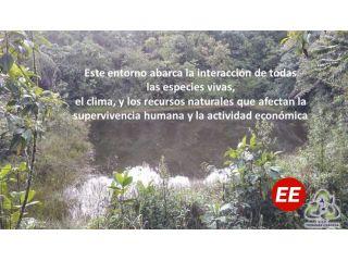 Ecología en la limpieza