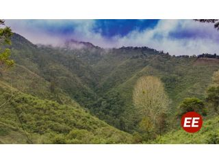CARDER despliega acciones para conservación de áreas protegidas