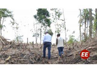 Duro golpe a la minería ilegal en Mistrató y deforestadores en el área metropolitana