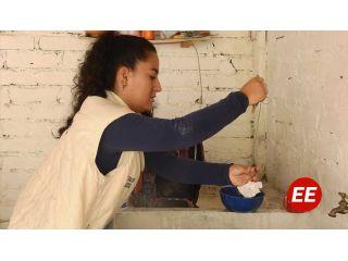 Continúan acciones de prevención contra el dengue en Pereira