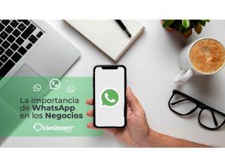 WhatsApp Business: Aprovecha todas sus ventajas para potenciar tu negocio