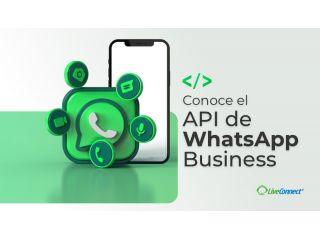 Conoce el API de WhatsApp Business: Tipos, Ventajas, Pros y Contras