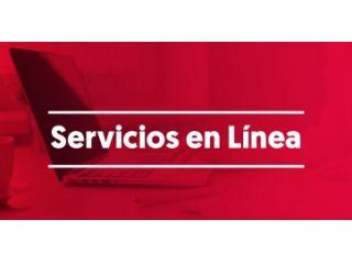 Guía de Manejo Servicios en Linea II.
